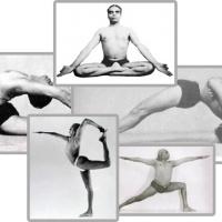 Iyengar Yoga, coronavirus, come praticare senza lezioni. 1: posizioni in piedi